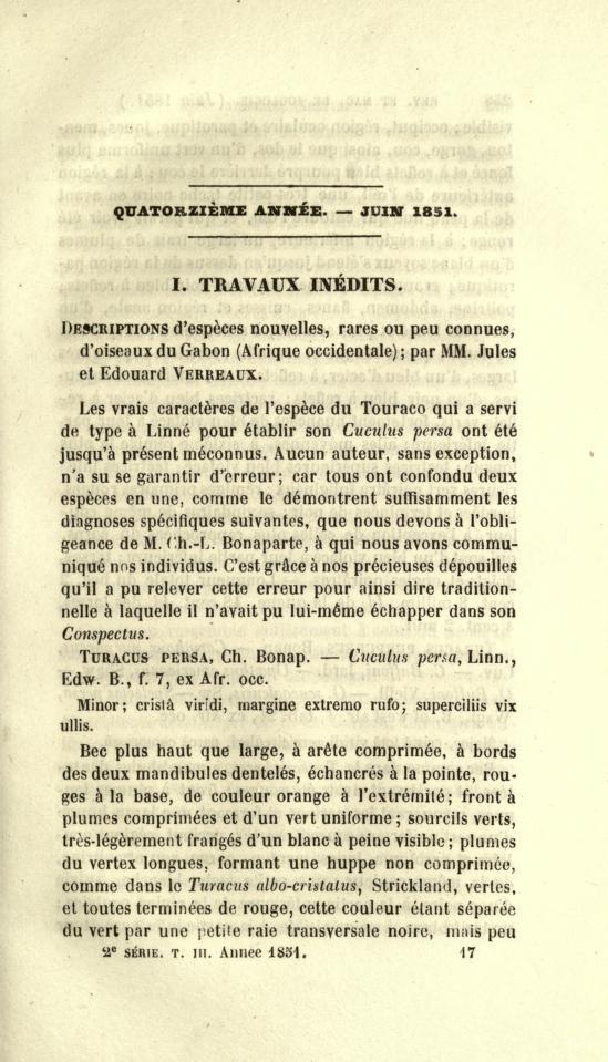 Travaux Inedits. Descriptions d'Especes Nouvelles, Rares ou peu Connues, d'Oiseaux du Gabon (Afrique occidentale)