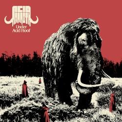 Acid Mammoth - Them!